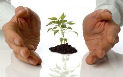 SME development