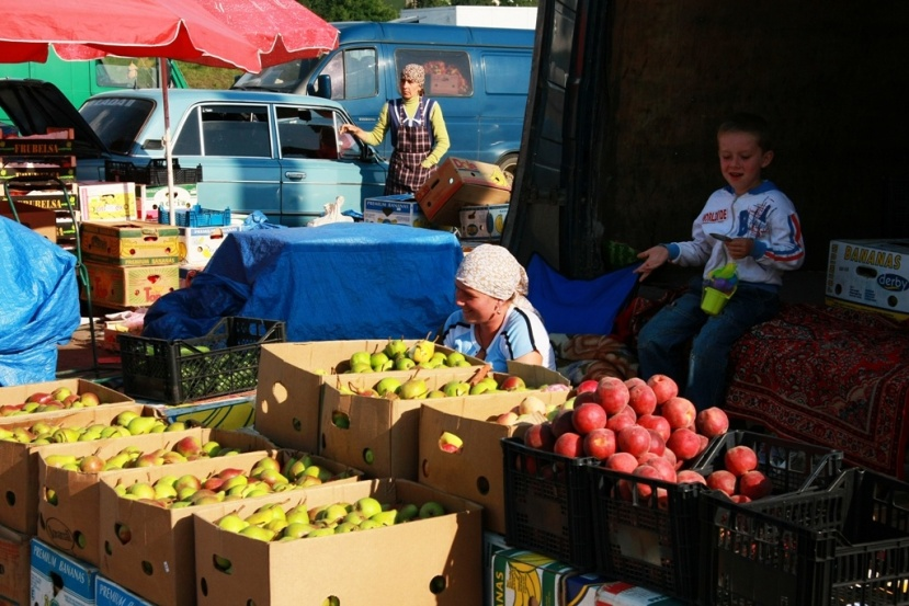 Improved food safety to intensify Ukraine's exports to the EU