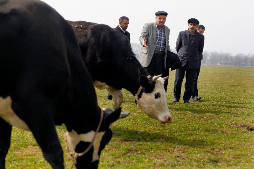 EU helps create Ukrainian agricultural landsmarket