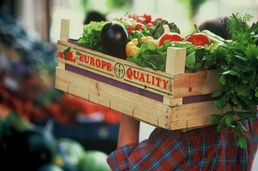 Wheale and Dobidovska: Only Businesses Can Ensure Food Safety