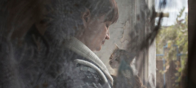 EU helps victims of domestic violence in Ukraine'seast